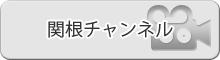 関根チャンネル